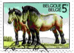 Belgie dieren